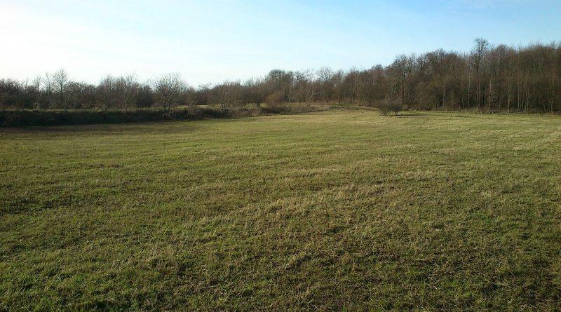 Grundstück suchen leicht gemacht – Teil 1: Die Suche